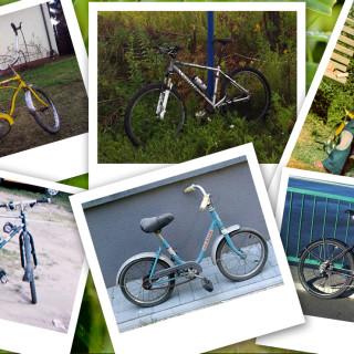 Moje rowery